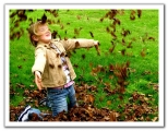 الإسم: طفل يلعب بورق الشجر   الوصف: طفل يلعب بورق الشجر   عدد الزيارات: 1910